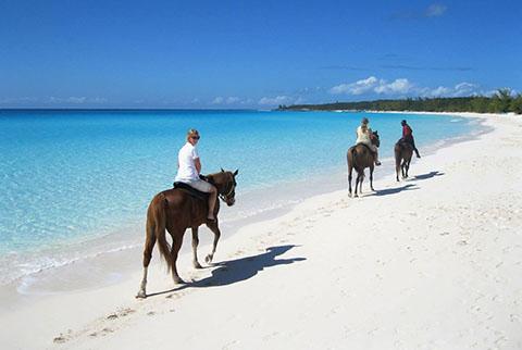 Horseback Riding Punta Cana Beach