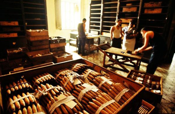 Cigar Tour from Casa de Campo